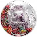 Nádherné vyobrazení ježka na atraktivní parciálně kolorované stříbrné minci